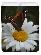 Butterfly On Shasta Daisy Duvet Cover