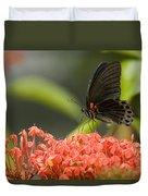 Butterfly Papilio Memnon Feeding Duvet Cover
