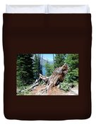 By Jenny Lake Duvet Cover