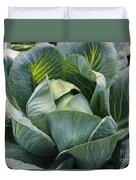 Cabbage In The Vegetable Garden Duvet Cover