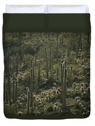 Cacti Near Tucson, Arizona Duvet Cover