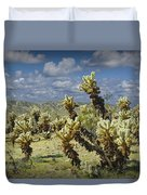 Cactus Also Called Teddy Bear Cholla Duvet Cover