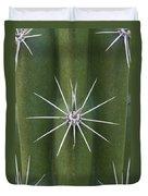 Cactus Spines, Saguaro National Park Duvet Cover