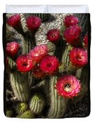 Cactus With Red Flowers Duvet Cover