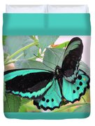 Butterfly Of Many Colors Duvet Cover