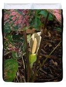 Caladium Flower 2 Duvet Cover