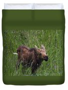 Calf Feeding Duvet Cover