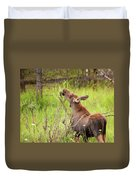 Calf In The Willows Duvet Cover