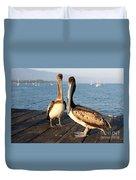 California Pelicans Duvet Cover