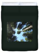 California Redwood Trees Fine Art Prints Forest Duvet Cover