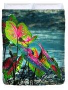 Calladiums Duvet Cover