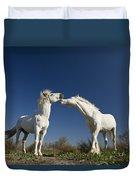 Camargue Horse Equus Caballus Stallions Duvet Cover