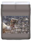 Camel At Sebastia Duvet Cover