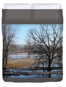 Canadian Geese Take Flight Duvet Cover