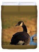 Canadian Goose Closeup By A Pond Duvet Cover