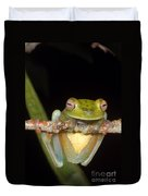 Canal Zone Tree Frog Duvet Cover
