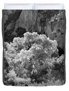 Canyon Treasure Duvet Cover