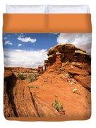 Canyonlands Textures Duvet Cover