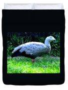 Cape Barren Goose Duvet Cover