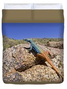 Cape Flat Lizard  South Africa Duvet Cover by Piotr Naskrecki