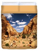 Capitol Reef Cohab Canyon Duvet Cover