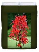 Cardinal Flower Full Bloom Duvet Cover