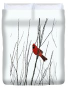 Cardinal In Willow  Duvet Cover