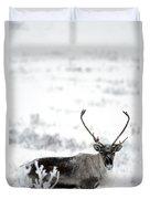Caribou Rangifer Tarandus Dempster Duvet Cover