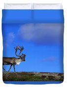 Caribou Walking On Hill Crest Duvet Cover