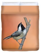 Carolina Chickadee - D007814 Duvet Cover