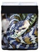Carpet Python Duvet Cover
