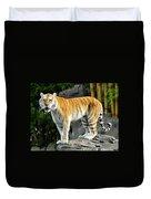 Cat On The Rocks Duvet Cover