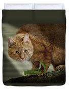 Cat Out On A Limb Duvet Cover
