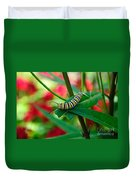 Caterpillar Before The Butterfly 1 Duvet Cover