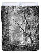 Catskill Brook, 1873 Duvet Cover