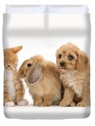 Cavapoo Pup, Rabbit And Ginger Kitten Duvet Cover by Mark Taylor