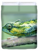 Chameleon In The Forests Of Mt Meru Duvet Cover