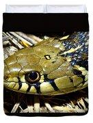 Checkered Garter Snakes Head Duvet Cover