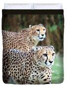 Cheetah Brothers Duvet Cover
