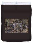 Cheetah Kitten Duvet Cover