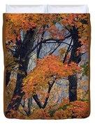 Cherohala Maple - D007676 Duvet Cover