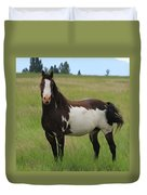 Chestnut Overo Paint Stallion Duvet Cover