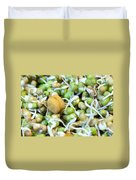Chickpea And Other Lentils In The Form Of Healthy Eatable Sprouts Duvet Cover