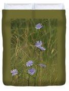 Chicory 2765 Duvet Cover