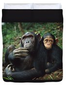 Chimpanzee Adult Female With Orphan Baby Duvet Cover
