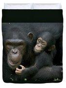 Chimpanzee Female Holding Infant Duvet Cover