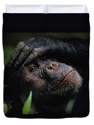 Chimpanzees, As Reported By Jane Duvet Cover