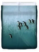Chinstrap Penguin Pygoscelis Antarctica Duvet Cover