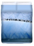 Chinstrap Penguins Lined Duvet Cover