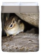 Chipmunk In Danger Duvet Cover